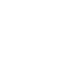 the_blog_awards_finland_logo_white